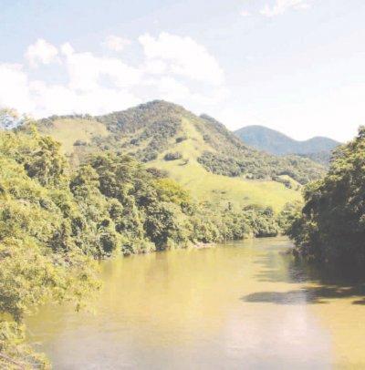Casimiro possui pouco mais de 31% de seu território coberto por remanescentes florestais