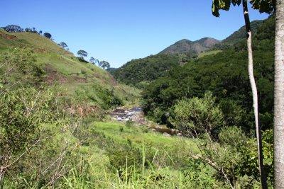 Proprietários querem recuperar área de mata ciliar do rio Macaé