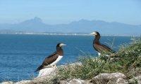 Do arquipélago de Santana, ao pico do Frade!