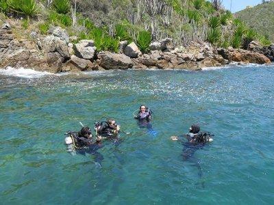 Além de avaliar e monitorar a saúde dos ambientes coralíneos, grupo vai trabalhar para sensibilizar a sociedade sobre a importância da conservação dos corais
