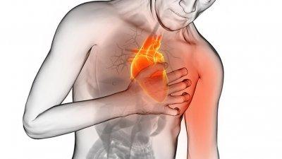 Objetivo é integrar profissionais e acadêmicos para garantir o melhor tratamento para os pacientes com problemas cardiovasculares
