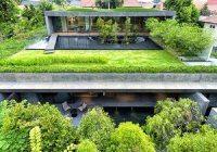 O teto verde pode ser uma boa alternativa para ajudar a manter a temperatura da edificação controlada