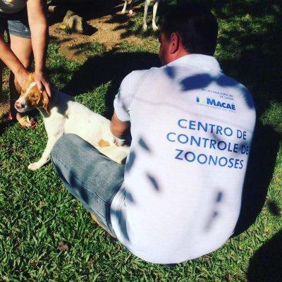 Feira de adoção de cães e gatos acontece na orla de Imbetiba