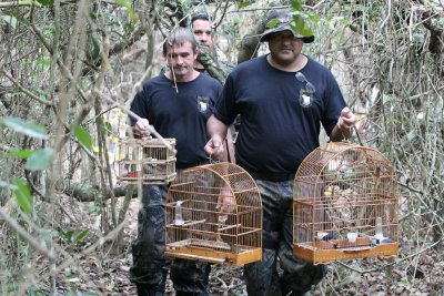 O local onde se deu a libertação dos animais não pode ser divulgado para evitar a presença de caçadores