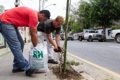 O objetivo é trazer o verde natural para a área urbana integrando urbanização e meio ambiente