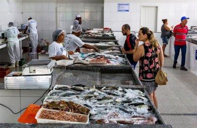 O local também conta com a atuação de um veterinário que faz a verificação de temperatura e outros itens que garantem o controle de  qualidade do pescado