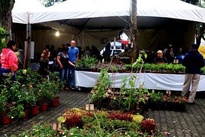A exposição tem área de 500m², sendo 400m² coberto, com cerca de 300 espécies de plantas ornamentais.