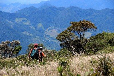 Cercada por essa vegetação, desde o ano passado, Macaé faz parte do roteiro do Caminho da Mata Atlântica