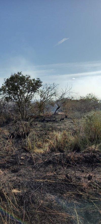 Ainda não se sabe a causa do incêndio e ação criminosa não é descartada